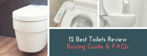 12 Best Toilets Review